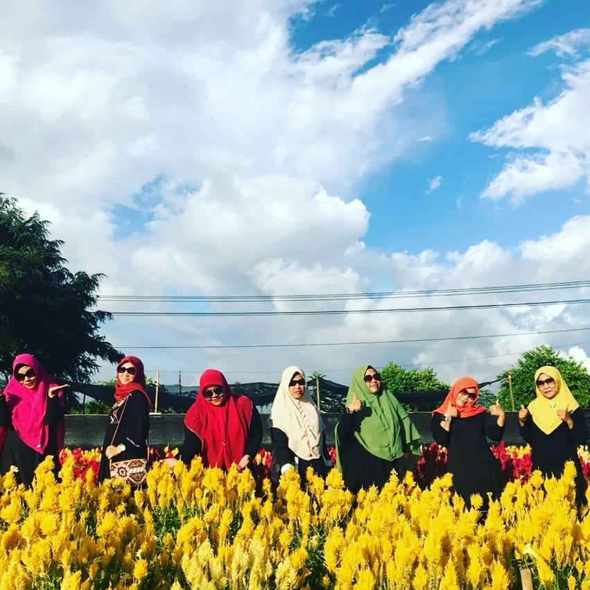 Trybe Celosia Garden Destinasi Wisata Aceh Jaya