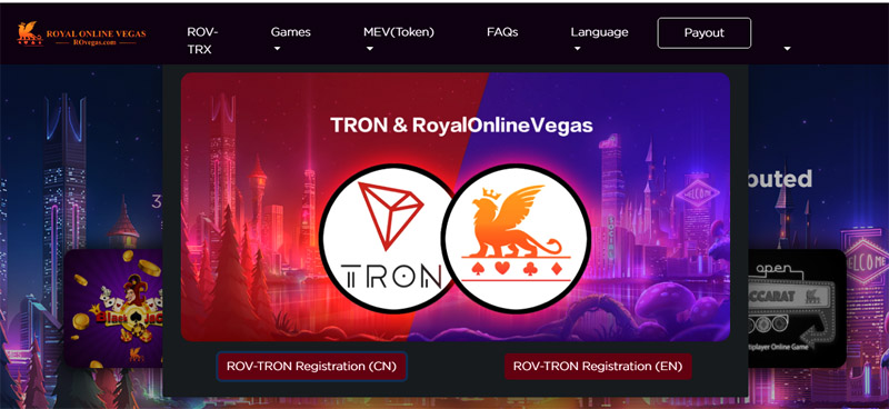 Trybe: Venturing and Investing into the World of TRON